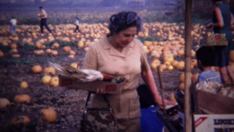 1967: Mature women buying indian colored corn farmstand market Footage