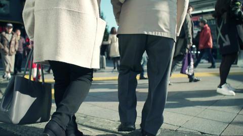 people, old, senior, walking, group, happy, park, elderly, couple, seniors, Footage