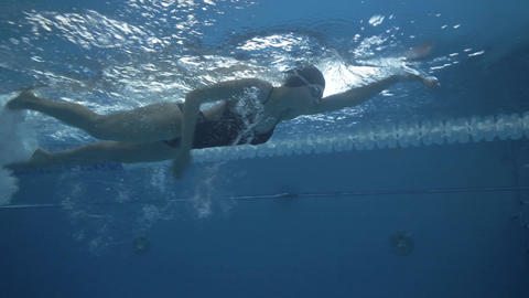 Female swimmer swims crawl stroke on swimming path in transparent water pool Footage