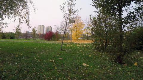 16 rodbot autumn Footage