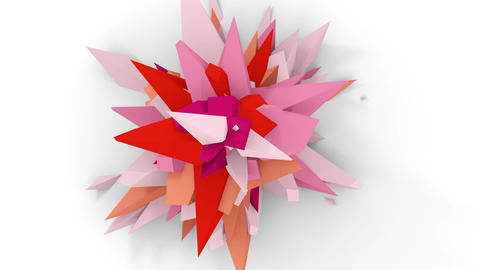 4K. Abstract Digital Flower. Version With Pink, White And Red Colors. Seamless Looped Animation