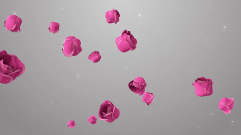 Animation of pink roses on the beautiful background Animation