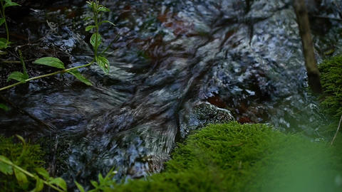 pure spring water in the creek in the mountains Footage