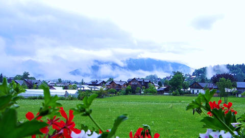 Video of small houses village in Switzerland with red flower foreground and moun Footage
