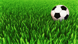 Classic Colored Soccer Ball Rolling On The Grass Field And Stops stock footage