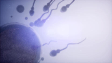 sperm and egg cell. frosen microscopic research Footage