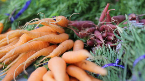 Beauty shot of fresh carrots and herbs Live Action
