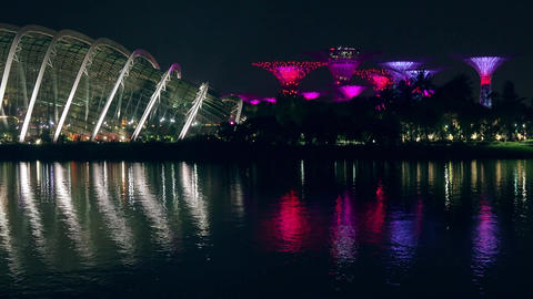 Singapore Night Light Show in Gardens by the Bay Footage