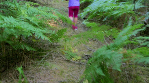 folowing little girl walking in woods in slow-motion hd Image