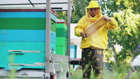 Young beekeeper man clean wooden honey frame working in the apiary on summer day Fotografía