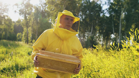 beekeeper man with wooden frame walking in blossom field while working in apiary Photo