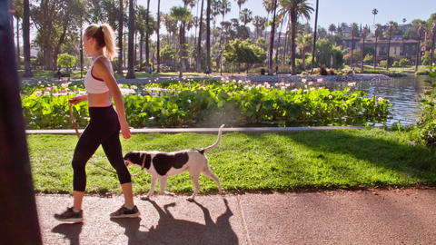 Attractive Woman Jogging With Her Dog Footage
