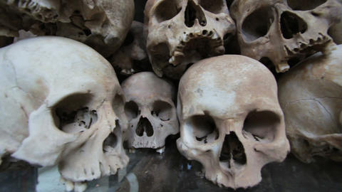 Skulls and bones in Killing field Stock Video Footage