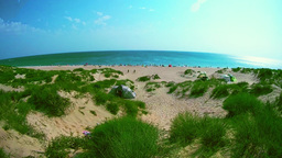 Panoramic view of the sandy beach full of people on a sunny day Footage
