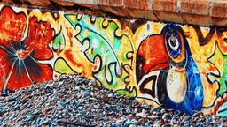 SOCHI. RUSSIA - CIRCA DEC 2015: Colorful graffiti on the breakwater Footage
