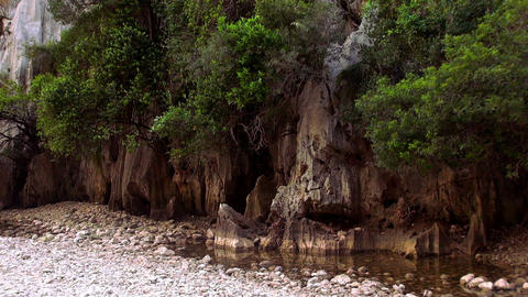 Great Nature In The Mountains Of Mallorca stock footage