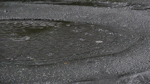 Slow motion view of raindrops collecting on pavement Footage