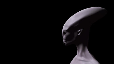 Digital 3D Animation of an Alien Animation