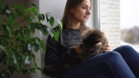 Happy woman sits on the window sill with a cat on her lap and strokes her fluffy Footage