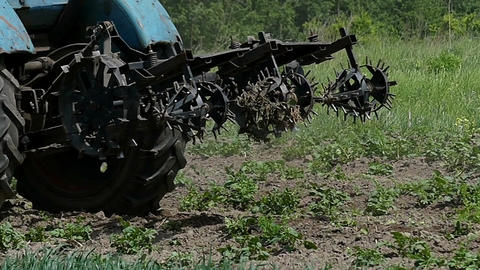 A blue tractor with a metallic harrow moves back in late summer 画像
