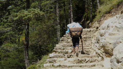 Porter is carrying a cargo in the Himalayas Footage