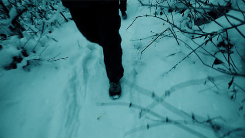Man and woman hiking in winter forest. Steadicam shot ビデオ