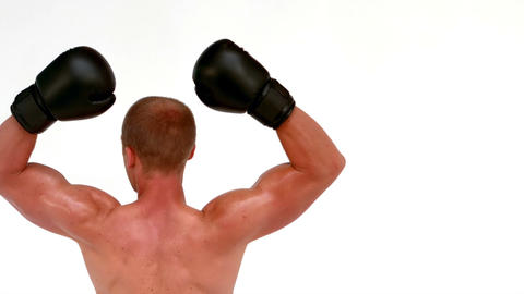 Rear view of boxer raising arms Footage