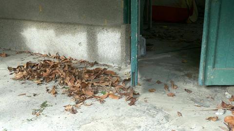 Towards door of abandoned building Footage