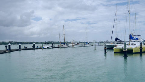 shot of new zealand auckland bayswater marina & city view Footage