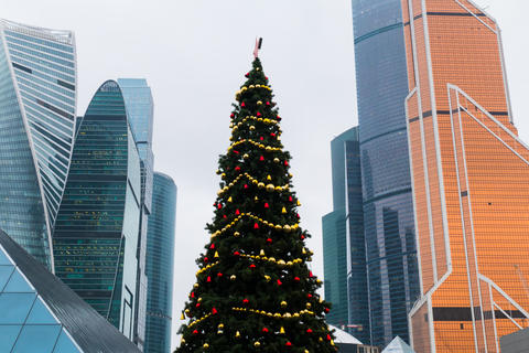 New Year tree among skyscrapers フォト