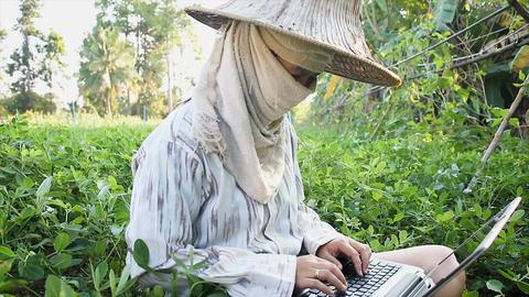 4K Farmer using laptop computer in the farm Archivo