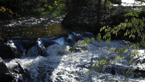 Rapid stream, river water flowing through the stones, wonderful nature scene of Footage
