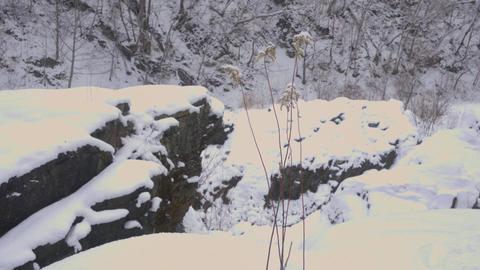 The Ishikari River, Hokkaido, Japan ライブ動画