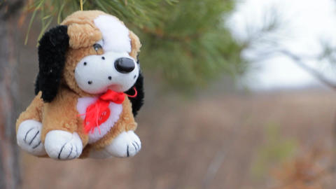 Plush dog on the pine branches ビデオ