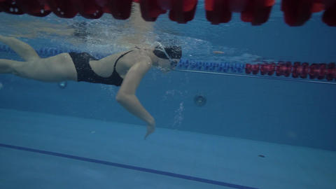 Woman swimmer swimming crawl stroke on path in transparent water pool 60 fps Live Action