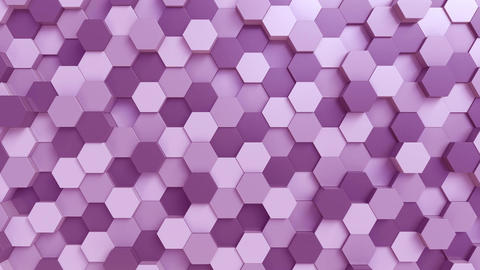 Purple hexagons loopable motion background Footage