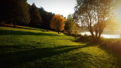 Green Grass Sunset On A Sunlit Lake Foto