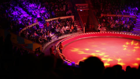 The circus ring and the audience Footage