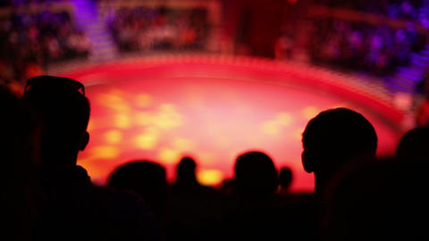 The silhouettes of the audience at the circus Footage