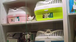 Pharmacy store in a veterinary clinic Footage
