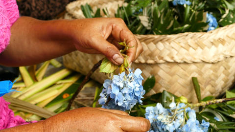 Balinese women hands make sacrificial baskets, Bali Footage