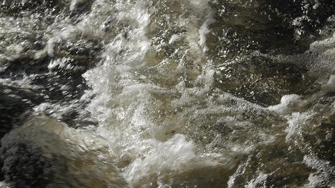 Mountain river in the forest close up Image
