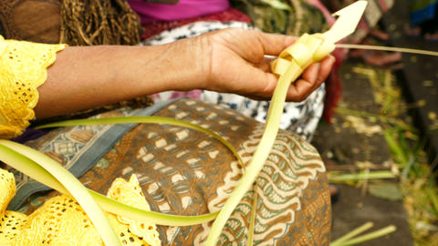 Balinese women hands make sacrificial baskets, Bali Footage