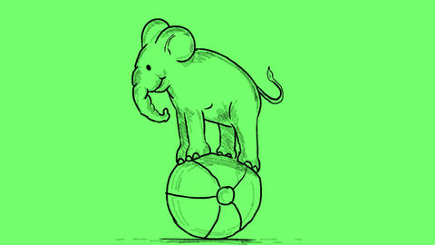 Cartoon Circus Elephant Balancing Ball 2D Animation Stock Video Footage