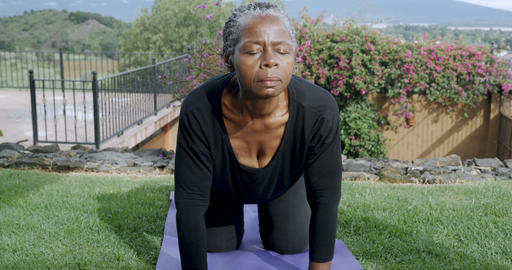 Flexible healthy retired African American woman in her 60s doing cat cow yoga Live Action