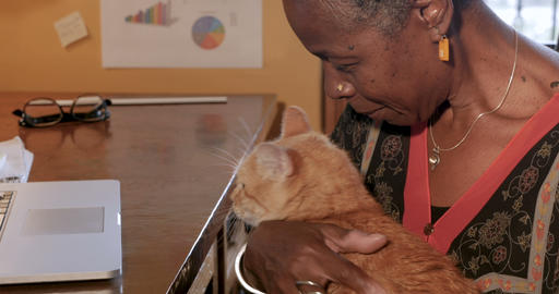 Mature African American woman taking a break petting her orange pet cat in her Live Action