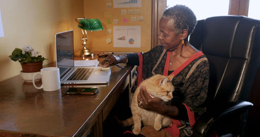 African American woman trying to work with an orange cat in her lap writing Footage