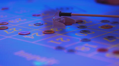 Roulette table in a casino - gamblers put tokens on numbers Live Action