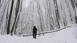 Follow shot. Young female hiking in the beautiful misty winter forest, and going Footage