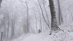 Follow shot of unrecognizable female hiker walking through beautiful snow Archivo
